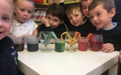 Junior and Senior Infants Science